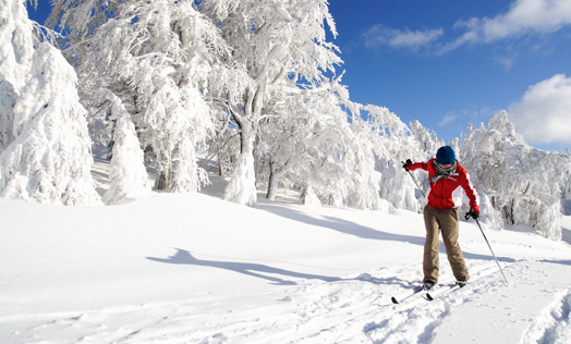 On Kovarov you will experience the real mountain winter